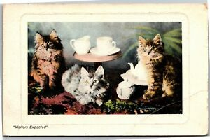 Visitors-Expected-Three-Cats-at-Tea-Hartmann-Real-Glossy-Vintage-Postcard-K20