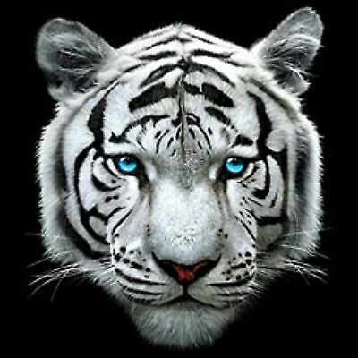 White Tiger #  2  T Shirt Pick Your Size Youth Medium to 6 X Large