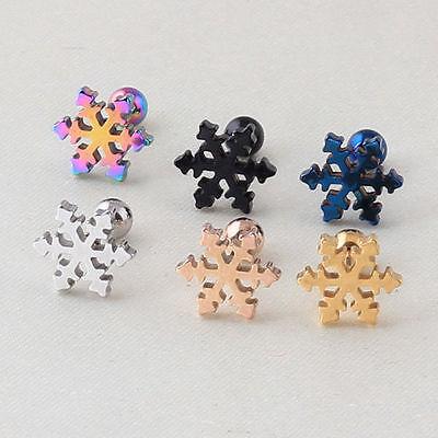 Beautiful Christmas snowflake Stud Earrings Titanium steel Ear stud /  D048