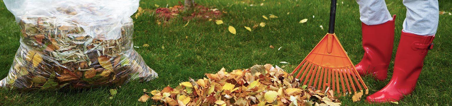 Globus & hitseller Herbst Garten Aktion