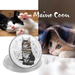 WR-2015-Vanuatu-Silver-Proof-5-Vatu-Coin-Maine-Coon-Cat-Series-Collect-Gifts-Boy