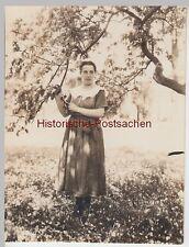 (F8199) Orig. Foto Biebrich, Wiesbadenerstraße 29, Dame unter Quittenbaum 20.5.1