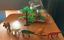 53pcs-Animal-Toy-Set-Baby-Action-Figure-Mini-Jungle-Dinosaur-Zoo-Model-Kids-Gift miniature 7