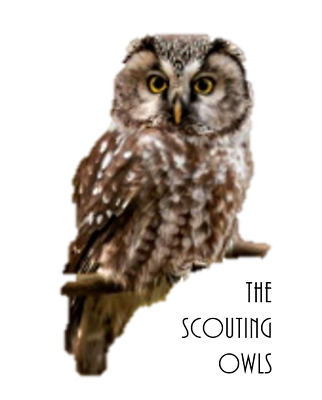 The Scouting Owls