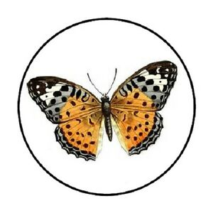 Download 48 Butterfly #4!!! ENVELOPE SEALS LABELS STICKERS 1.2 ...