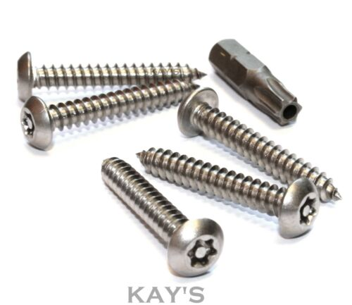 TORX BUTTON HEAD SELF TAPPING SECURITY WOOD SCREWS No.6,8,10,12 STAINLESS STEEL