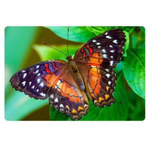 Floor//Door Mat butterfly print Rubber Home Carpet Entrance indoor Bath Area Rug