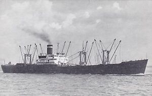 United-States-Lines-Cargo-Ship-Avertising-Postcard