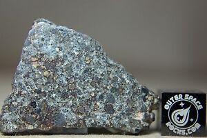 NWA-10303-LL3-5-Primitive-Chondrite-Meteorite-4-3-gram-complete-slice