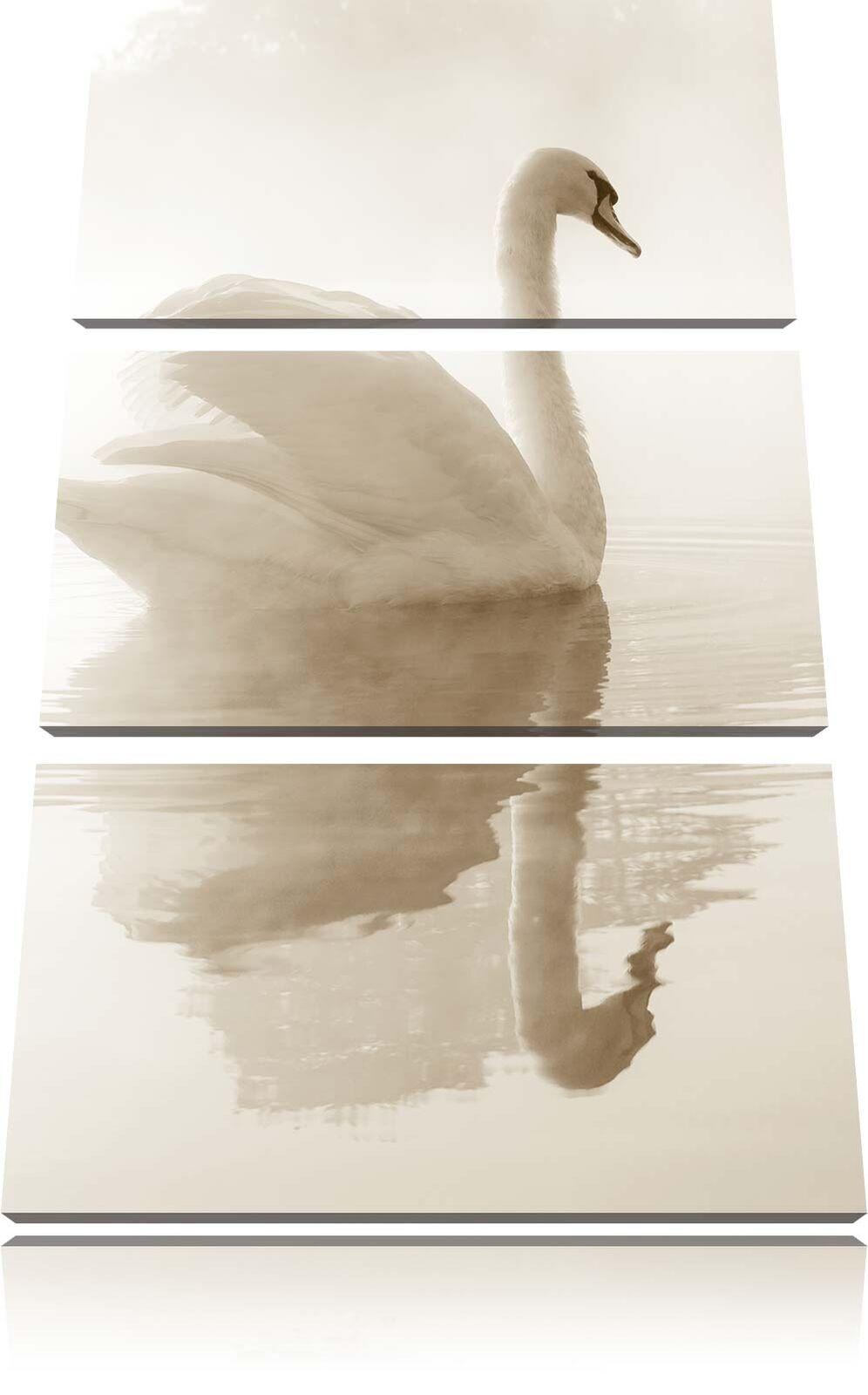 Bianco Cigno in Nebbia Mattutina 3-teiler Quadro su Tel Decorazione Parete