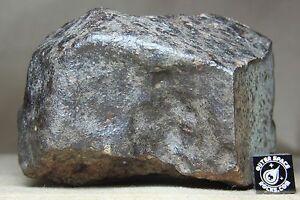 NWA-Unclassified-Meteorite-532-gram-windowed-individual-with-metal-amp-chondrules