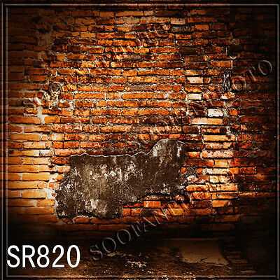 Brick 8'x8' Computer Painted Season Scenic Photo Background Backdrop SR820B88
