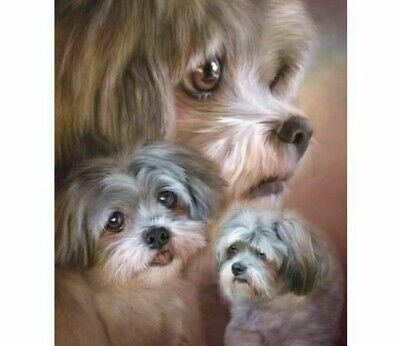 Diamond Painting Golden Retriever Puppy Design Embroidery Portrait Wall Displays