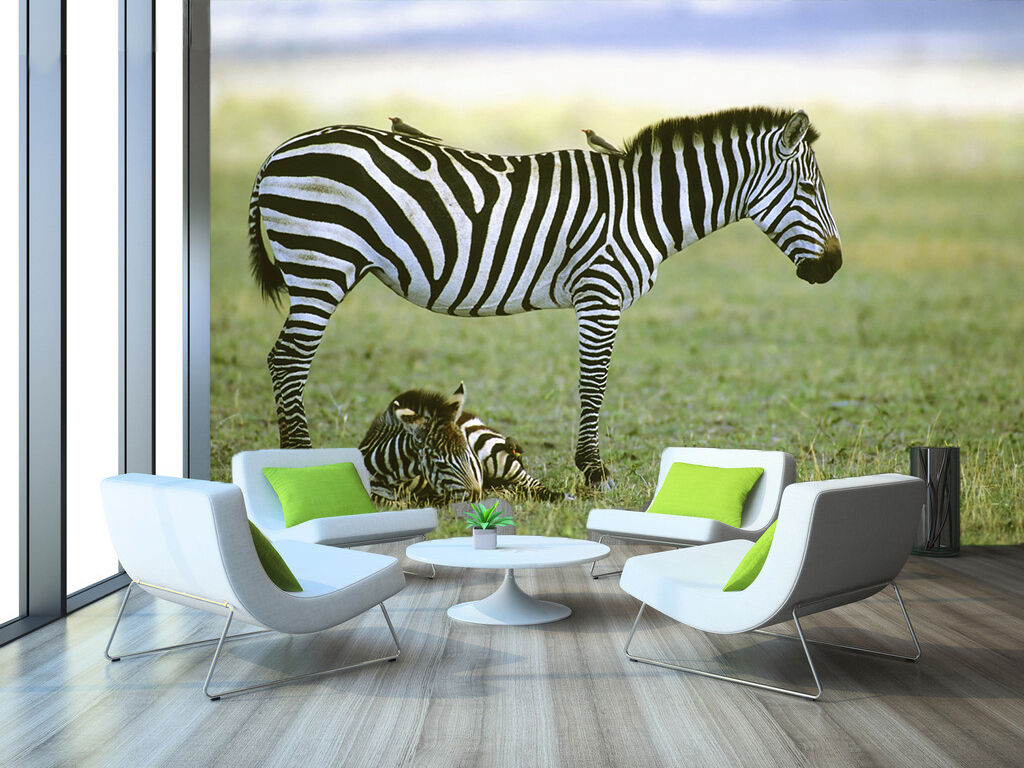 3D Zebra Animal Grassland 3713 Wall Paper Wall Print Decal Wall AJ WALLPAPER CA