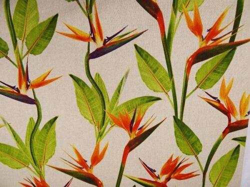 0,50 m Dekostoff Druck Blume Pflanze Strelitzie Baumwolle// Polyester  Stoff