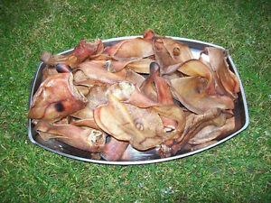 Schweineohren-50-Ohren