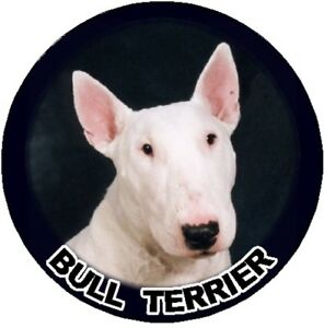 2-Bull-Terrier-Car-Stickers-By-Starprint