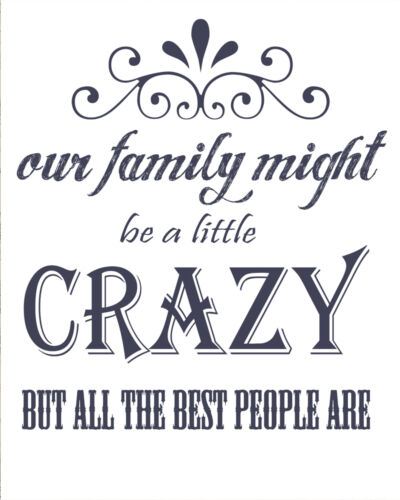 Crazy Family Best Family Are VINTAGE ENAMEL METAL TIN SIGN WALL PLAQUE