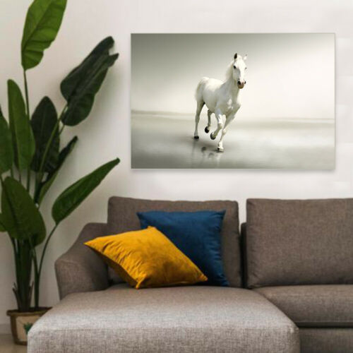 Unframed Modern Canvas Art Painting Picture Horse Print Room Wall Hanging Decor