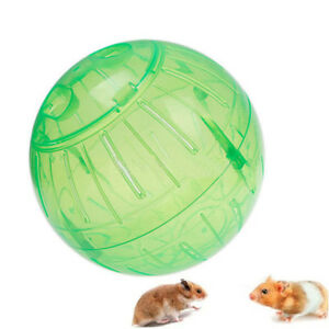 New Cute Plastic Pet Mice Gerbil Hamster Jogging Playing Exercise Ball Toy