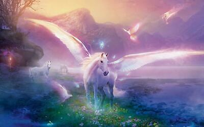 A5 A4 A3 A2 A1 A0 Sizes Fantasy Unicorn Paradise Giant Poster