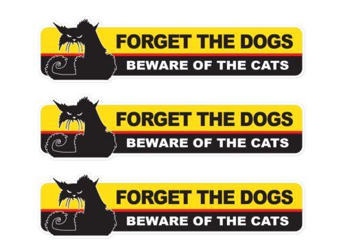 Beware of the Cats JDM window turbo drift vinyl sticker decal car