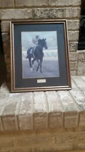 Ruffian-Champion-Filly-Race-Horse-Framed-Photo-Art-Print-RARE