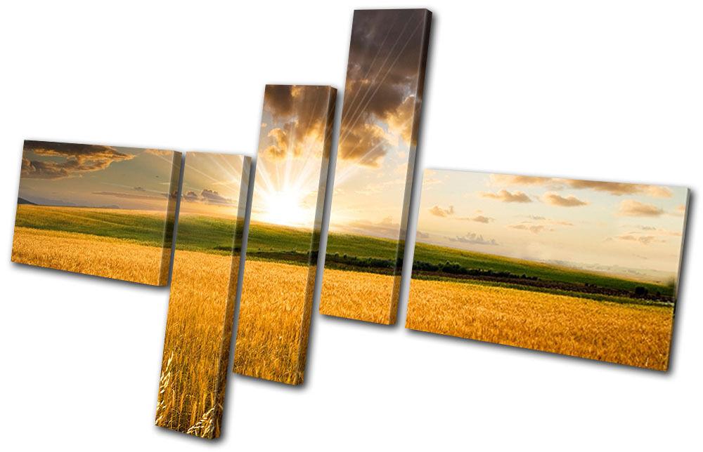 Landscapes Landscapes Landscapes Field Sunrise MULTI TELA parete arte foto stampa 602390
