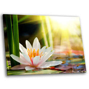 Framed-Canvas-Floral-Modern-Wall-Art-Picture-Prints-Sunrise-Water-Lily-Pond