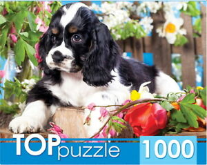 "Puzzle 1000 pcs 68.5*48.5cm. ""Spaniel puppy in the garden Red"" Cat ГИТП1000-2143"