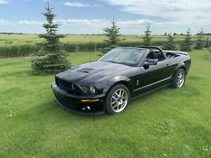 2009 Shelby GT 500 Convertible