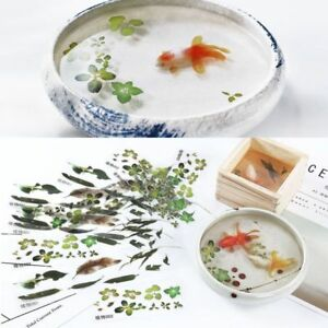 5-10Pcs-3D-Leaves-Goldfish-Clear-Film-Water-Sticker-For-Resin-Painting-Jewely