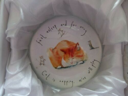 Crystal Paperweight Ginger Cat Sleeping Boxed Cat Lover Gift