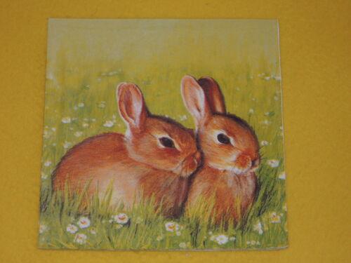5 Pièces Serviettes lapin petit lapin Serviettes technique Motif Serviettes Bunny