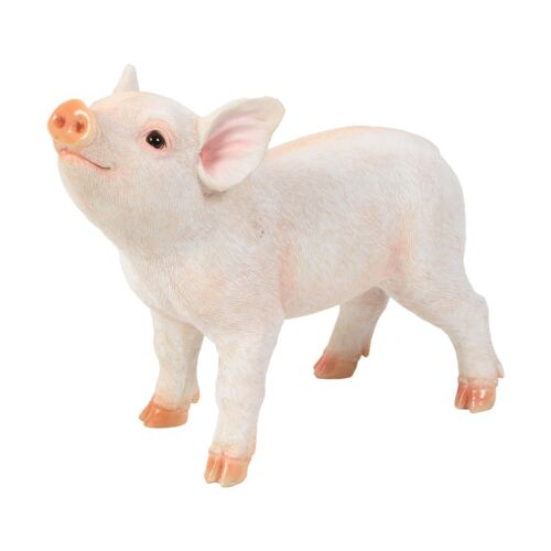 33cm Wide Piglet /'Naturecraft/' Ornament *NEW* Boxed Baby PIG Standing