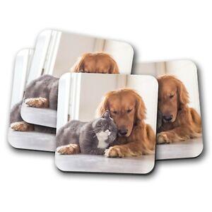 Friends Dog /& Cat Auto Coasters