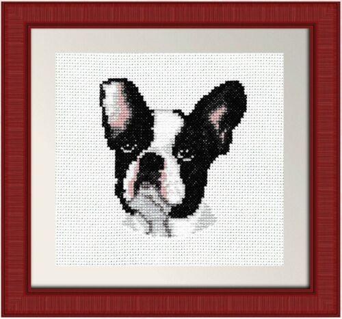 Counted Cross Stitch Kit French Bulldog