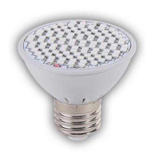 LED Pflanzenlicht Wachstumslampe Gemüse Sukkulenten Wuchslampen Wachsen Licht