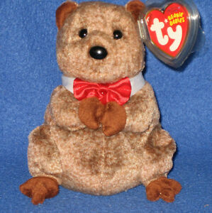 221326a0b66 Image is loading TY-PUNXSUTAWNEY-PHIL-2009-GROUNDHOG-BEANIE-BABY-COC-