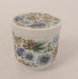 Arzberg-Forme-2200-Meran-Canette-Sucrier-Boite-Porcelaine-Antique