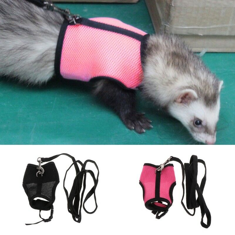 Collars leads harnesses small animal supplies pet supplies hamster rabbit pet mesh harness leash ferret guinea pig small animal walk lead publicscrutiny Gallery