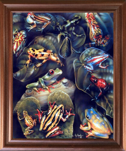 Amphibian Educational Kids Room Wall Decor Framed Picture Frog /& Toad Collage