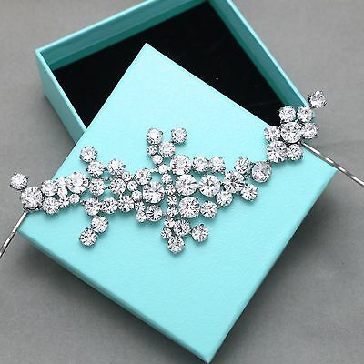 Vintage Style Wedding Rhinestone Crystal Headpiece Hair Clip / Establishment