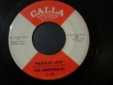 THE SANDPEBBLES NEVER MY LOVE 45 RECORD WHO KNOWS WHAT WILL BE TOMORROW