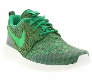 sports shoes e8794 7488c Image is loading NEW-WMNS-NIKE-Roshe-One-Flyknit-704927-303-