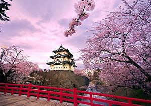 Sticker Autocollant Poster Paysage Japon Cerisier En Fleur Cherry