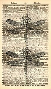 ORIGINAL-Dragonfly-Vintage-Dictionary-Dragonfly-Art-Print-Dragonflies-322KSD