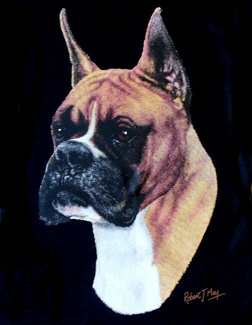 BEAUTIFUL BOXER DOG SHOW ART ZIP HOODIE SWEATSHIRT  755
