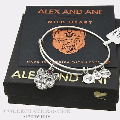 Expandable Rafaelian Silver Charm Bangle Authentic Alex and Ani Boston ii