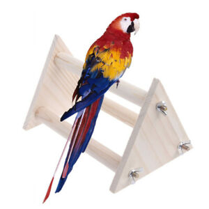Funny-Parrot-Bird-Perch-Stand-Play-Toys-Gym-Wooden-Activity-Table-Top-Playstand